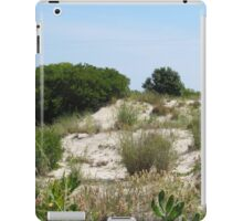 Dune at Corson Inlet iPad Case/Skin