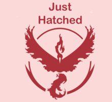 Just Hatched - Valor Kids Tee