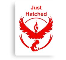 Just Hatched - Valor Canvas Print