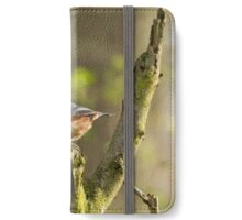 Nuthatch iPhone Wallet/Case/Skin