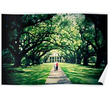 Painted Plantation Poster