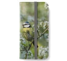Blue Tit iPhone Wallet/Case/Skin