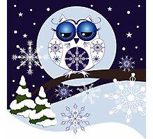 Snow Owl in Snowflakes land Photographic Print