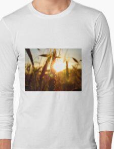 Sunset Grain Long Sleeve T-Shirt