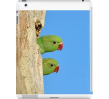 Two heads are better than one iPad Case/Skin
