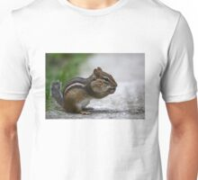 The Nut Collector Unisex T-Shirt