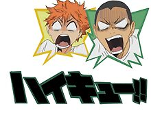 Haikyuu!! - Karasuno - Hinata & Tanaka by TrashCat