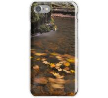 Fall Swirl iPhone Case/Skin