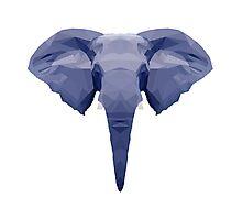 Geometric Elephant Face Photographic Print