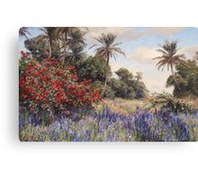 Georg Macco  Southern Landscape with Lavender Canvas Print