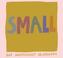 small but surprisingly destructive Kids Clothes