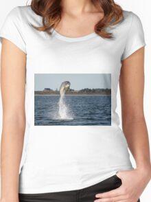 Bottlenose Dolphin High Jump Women's Fitted Scoop T-Shirt