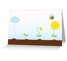 Flower growing stages. Process of growing plant in four stages Greeting Card