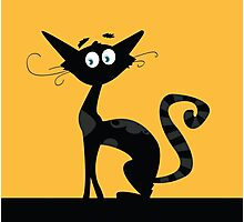 Black cat. Black silhouette of cat isolated on color background Photographic Print