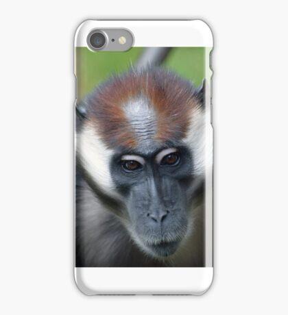 CHERRY-CROWNED MANGABEY MONKEY iPhone Case/Skin