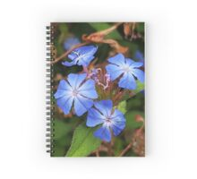 Delicate in blue Spiral Notebook
