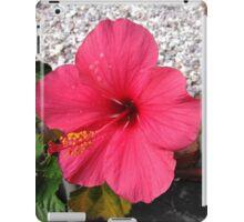 Taken in my Front yard iPad Case/Skin