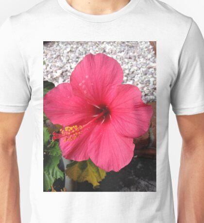 Taken in my Front yard Unisex T-Shirt