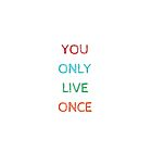 YOU ONLY LIVE ONCE by IdeasForArtists