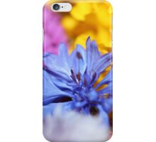 Colors From The Garden iPhone Case/Skin