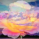 Rose in the sky without diamonds by ♥⊱ B. Randi Bailey