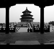 Temple of Heaven - Beijing, China by Alex Zuccarelli