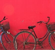Bicycles - Siem Reap, Cambodia by Alex Zuccarelli