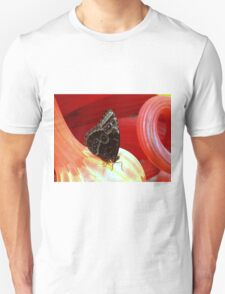 Closed Blue Morpho on Red Glass T-Shirt