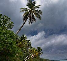And Atoll - Pohnpei, Micronesia by Alex Zuccarelli