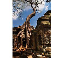 Ta Prohm Strangler Fig - Ta Prohm, Cambodia Photographic Print