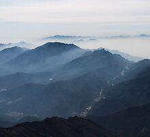 Morning Mist - Deogyusan National Park, South Korea by Alex Zuccarelli