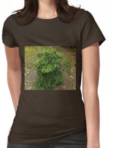 Tree With Water Spots                                      Pentax X-5 16 MP  Womens Fitted T-Shirt