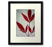 New Leaves Framed Print