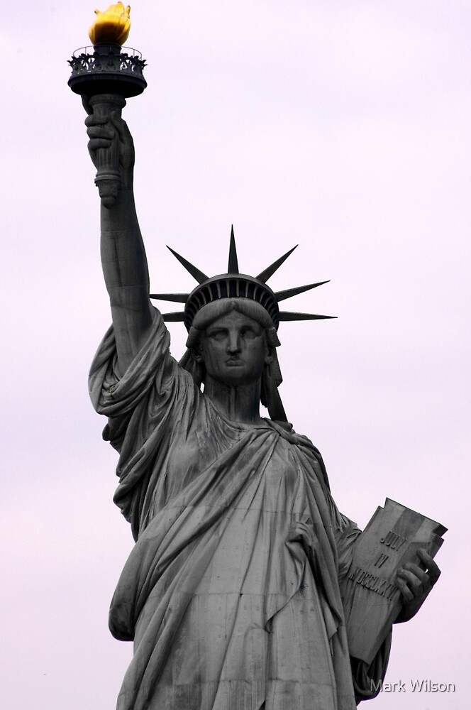 Lady Liberty by Mark Wilson