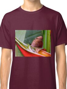 Butterfly Eating Dinner Classic T-Shirt