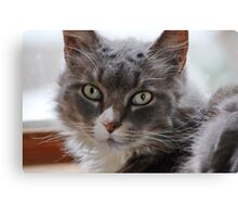 Portrait of Rinnie Canvas Print