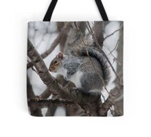 Squirel in a Tree Tote Bag