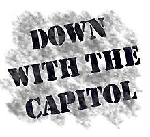 Down With the Capitol. Photographic Print