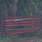 Dilapidated Bench  by Candy Gemmill