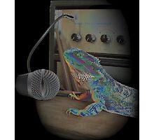 Bearded dragon rock music Photographic Print