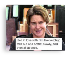 The Fault In Our Ketchup Canvas Print