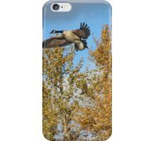 Canada Autumn iPhone Case/Skin