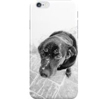 Puppy Dog Eyes iPhone Case/Skin