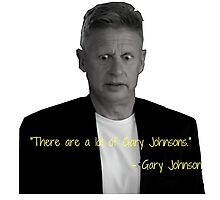 There are a lot of Gary Johnsons Photographic Print