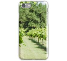 Grape Vine 2 iPhone Case/Skin