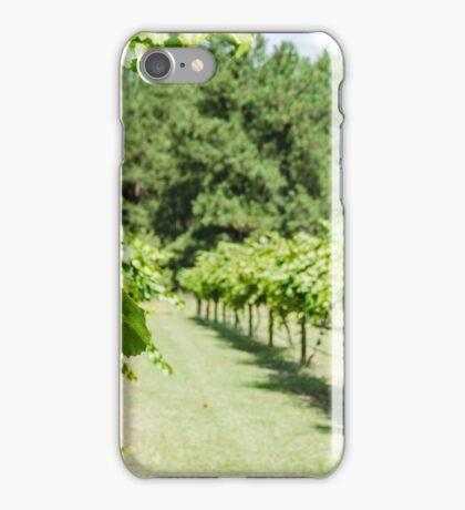 Grape Vine 2 iPhone Case/Skin