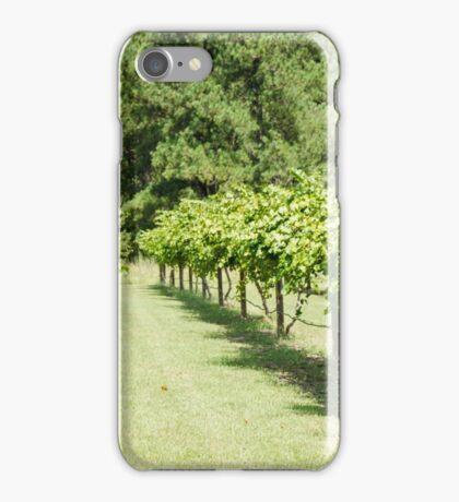 Grape Vine 3 iPhone Case/Skin