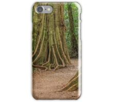 Rainforest Mary Cairncross park iPhone Case/Skin