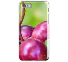 Grape Vine 4 iPhone Case/Skin