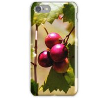 Grape Vine 5 iPhone Case/Skin